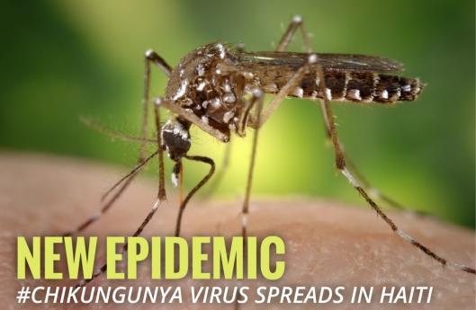 Chikungunya Virus in Haiti